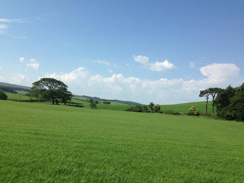 Bowland scenery