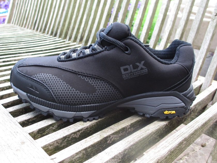 DLX trail shoe