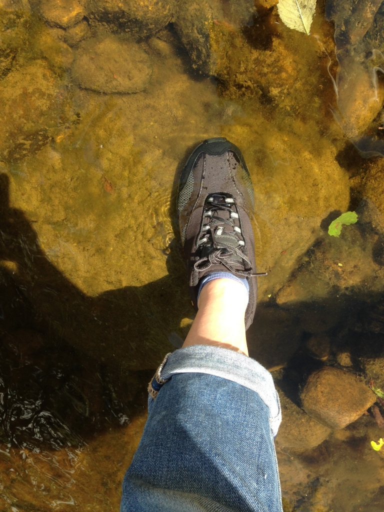 DLX trail shoe in water
